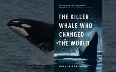 Review: The Killer Whale Who Changed The World